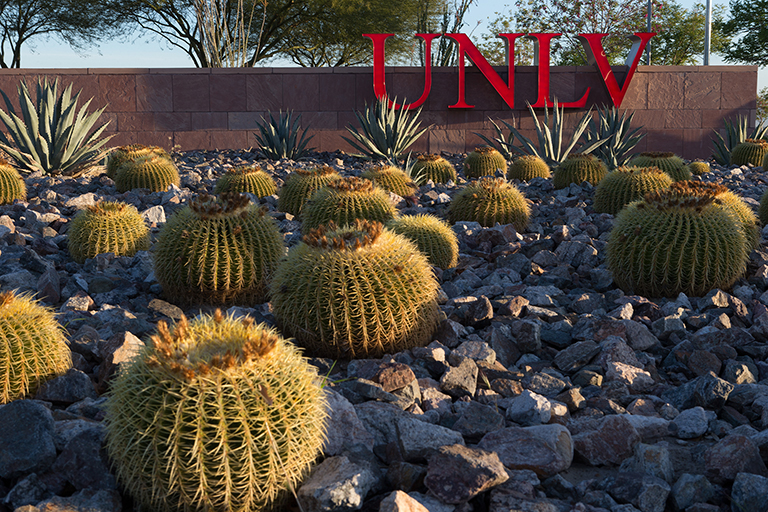 Campus landscaping with many cacti